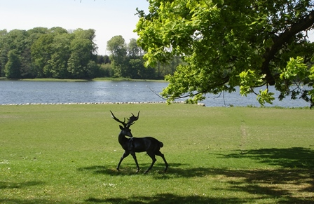 """""""Søen"""" set fra Slotsparken, 2007"""