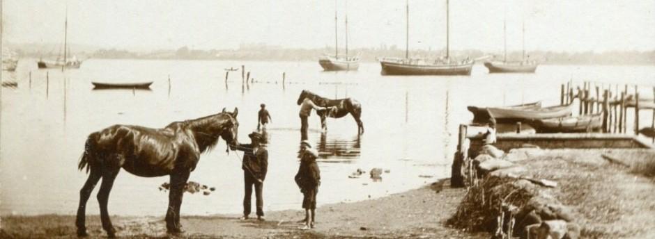 cropped-cropped-cropped-Foto-Troense-19051.jpg